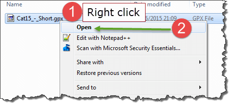 Right click the file name > choose Open