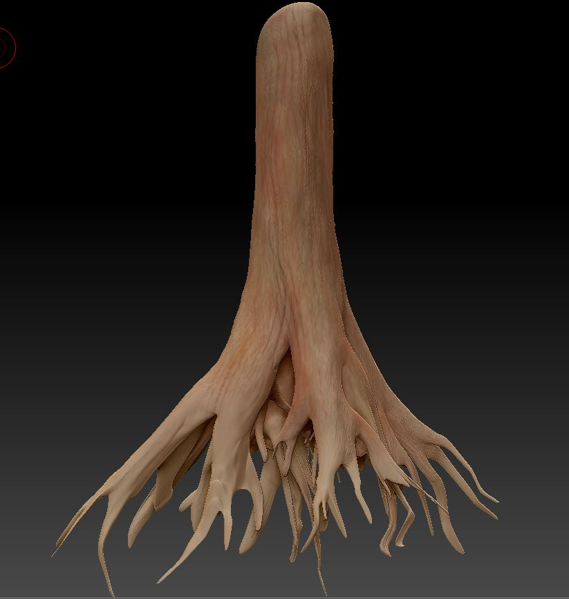 Tree Roots modelings