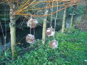 wilgentenen bollen met wol