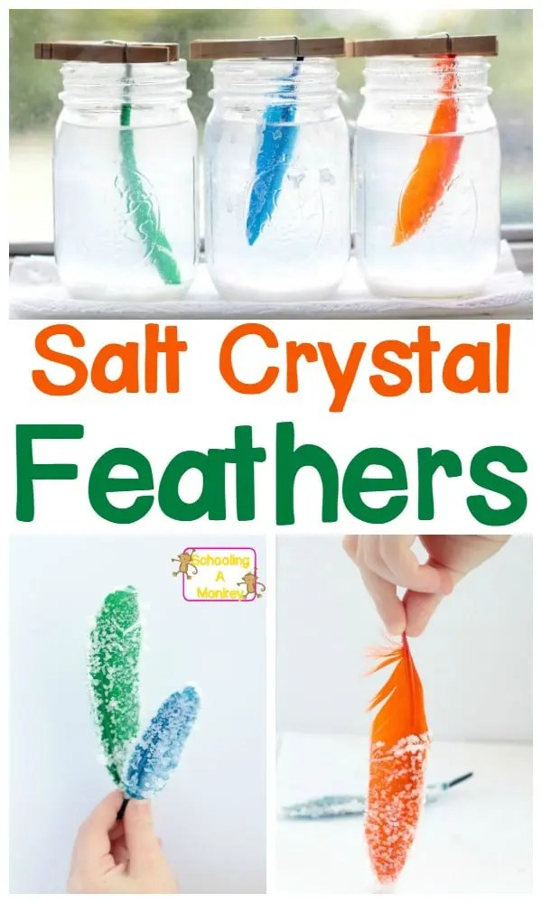 Simple Science Projects How to Make Salt Crystal Feathers