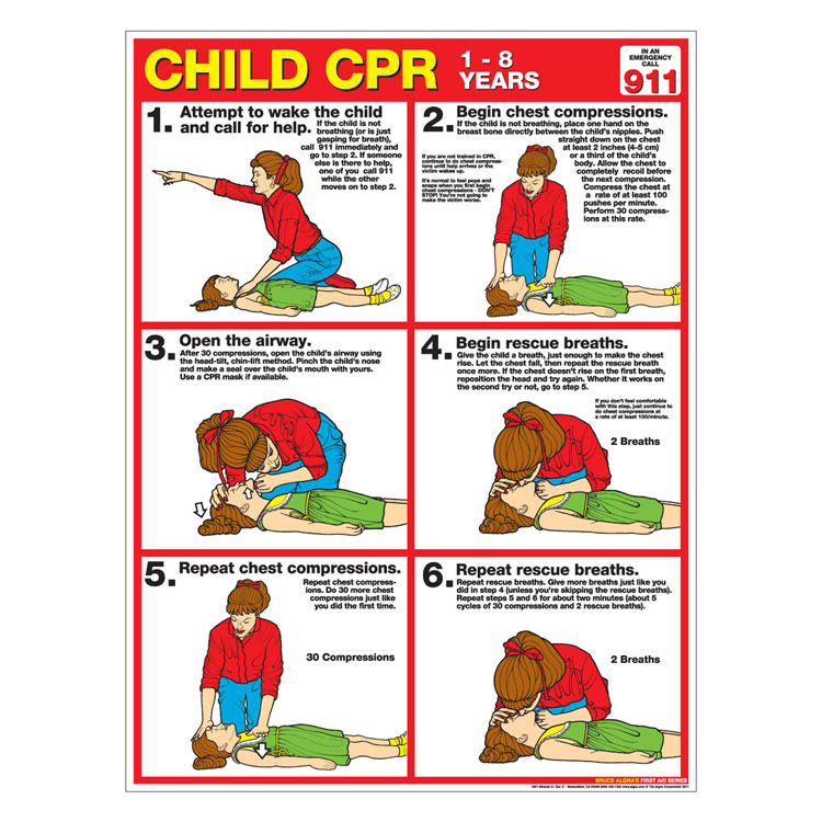 CPR Chart Child (Paper)