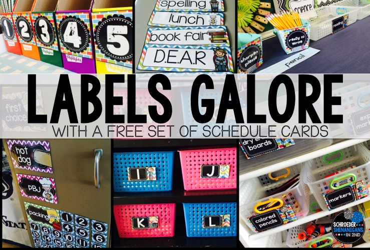 labels, freebie, schedule cards, classroom labels