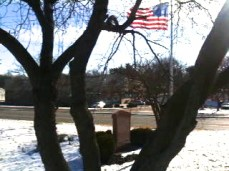The World War II Honor Roll and American flag as seen through the gnarled trunks of one of the fine Red Bud trees in the Memorial Park.