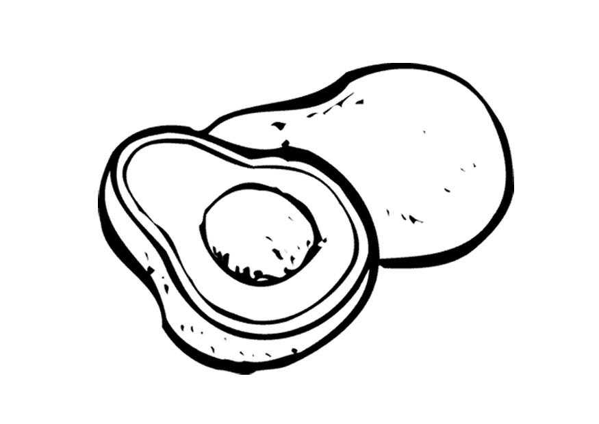 avocadoseeddiagram1