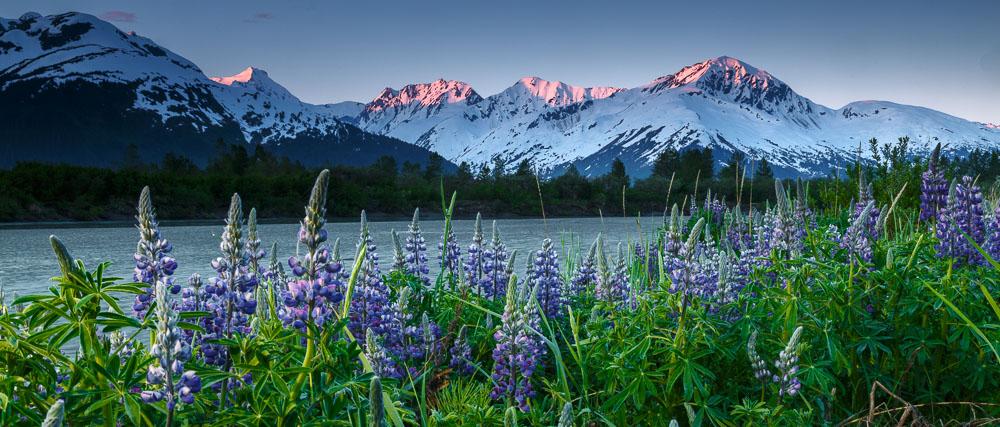 National Geographic Fall Wallpaper Alaska Landscape Photography Jeff Schultz