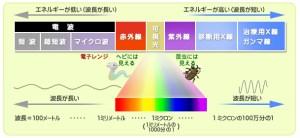 電磁波_放射線研