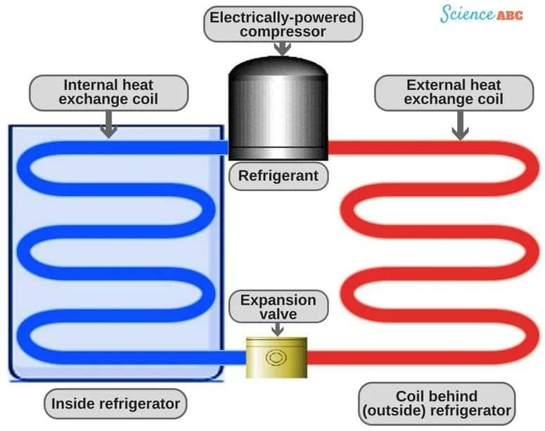 Refrigerator Working Principle How Does A Refrigerator (Fridge) Work?