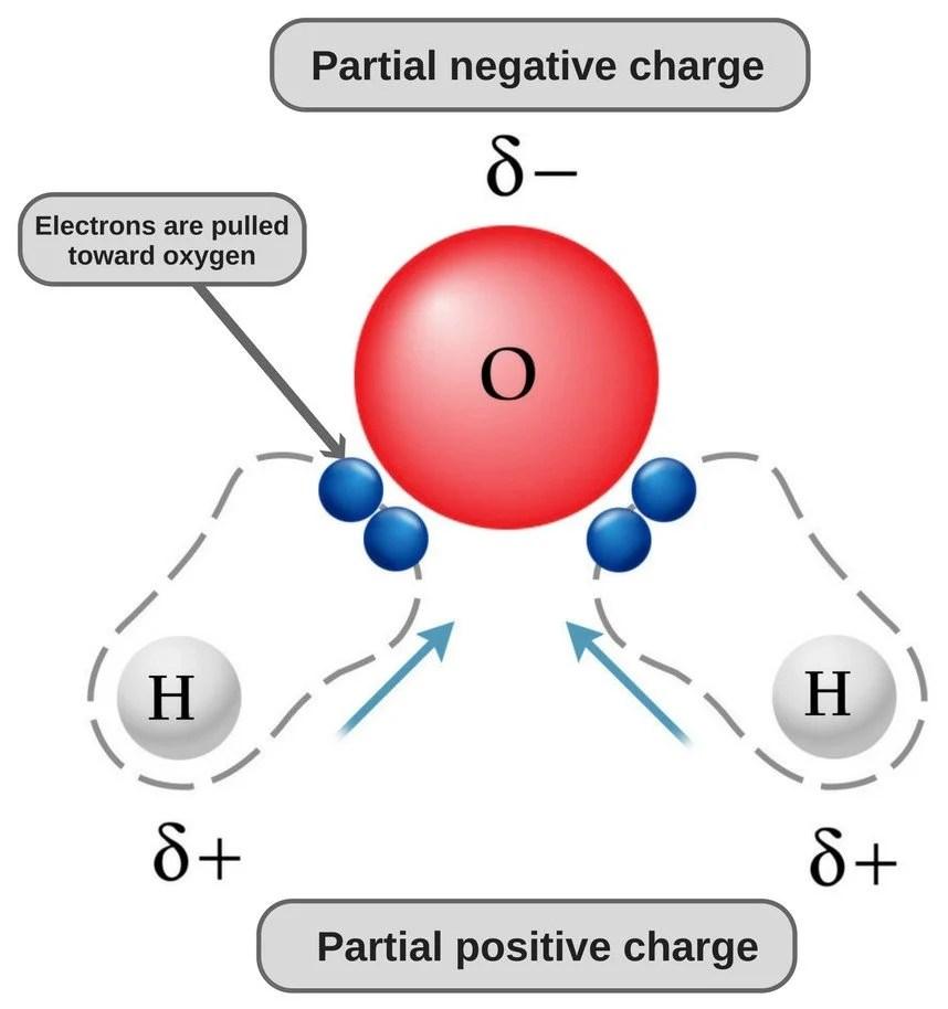 Is Carbon Dioxide (CO2) Polar Or Nonpolar? » Science ABC