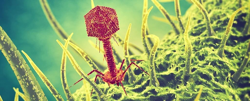 3d Wallpaper Under The Sea Researchers Are Using Viruses To Make Superbugs Commit Suicide