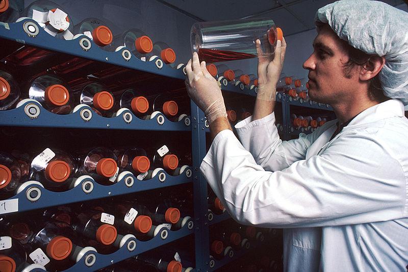 jobs for genetic engineering - Genetic Engineer Sample Resume