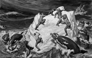 Killer Whales depicted preying on shipwrecked sailors. https://craftdmoviecritiques.files.wordpress.com/2013/12/bf-23.jpg?w=543&h=341