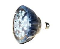 100 Watt LED Replacement Bulb