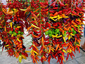 Peppers contain various capsaicin amounts, which rank them all over the Scoville Scale
