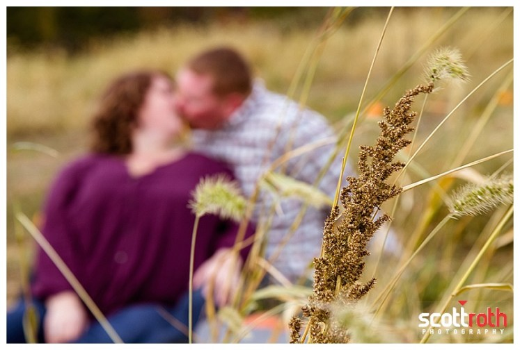 hackettstown-farm-engagement-photos-8782.jpg