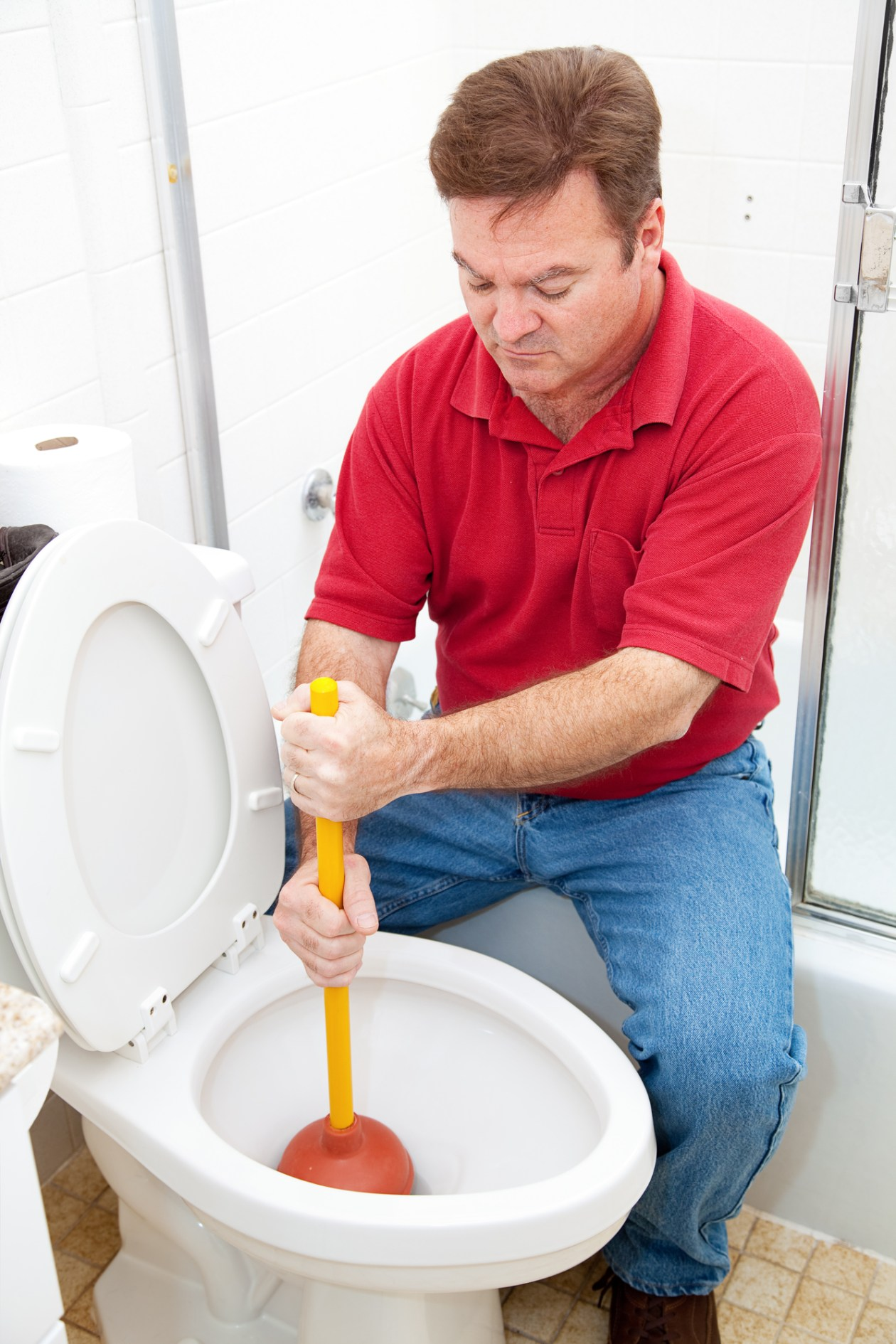 010-Scottsdale-Feb-11-How-to-Unclog-a-Toilet