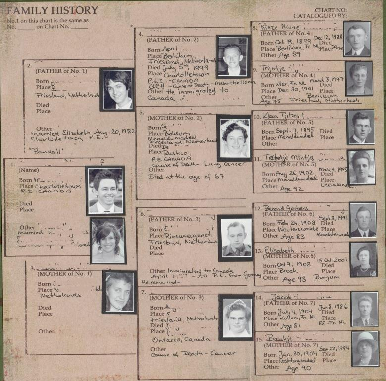 Essay family tree