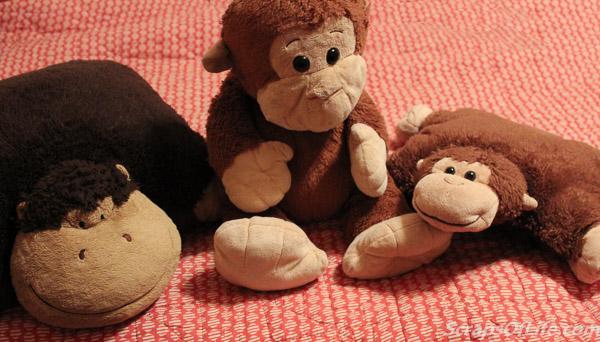 jvanderbeek_monkeys_2016-22