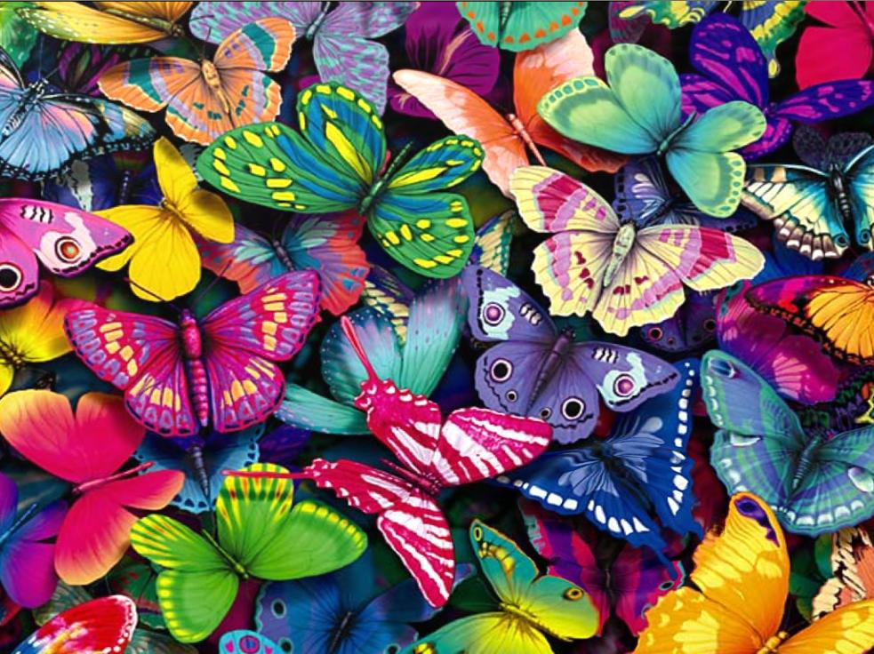 Fantastic Butterfly 1.2 Screensaver
