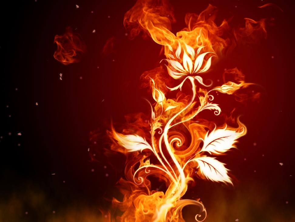 Fantastic Fire 1.2 Screensaver