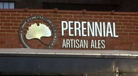 Perennial 01