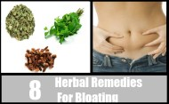 8 Herbal Remedies For Bloating