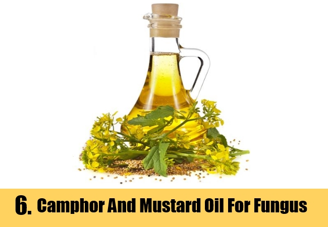 Camphor And Mustard Oil