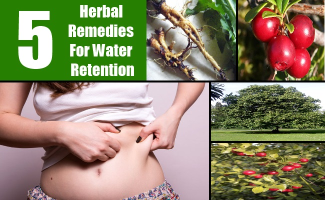 5 Herbal Remedies For Water Retention