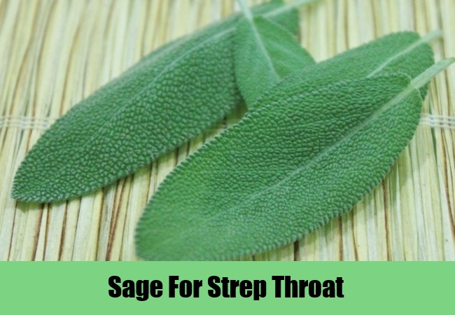 Sage For Strep Throat