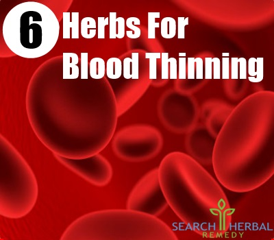 6 Herbs For Blood Thinning