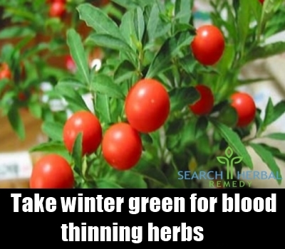 Blood Thinning Herbs