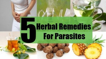 5 Herbal Remedies For Parasites