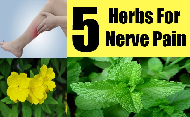 5 Herbs For Nerve Pain