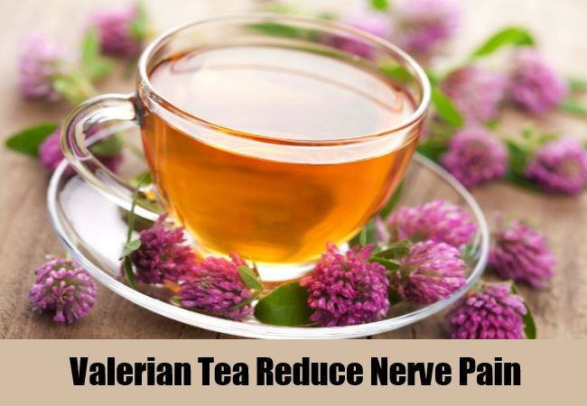Valerian Tea Reduce Nerve Pain