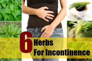 6 Herbs For Incontinence