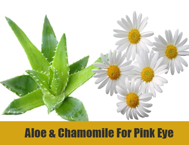 Aloe & Chamomile For Pink Eye