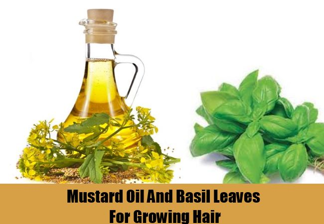 Mustard Oil And Basil Leaves For Growing Hair
