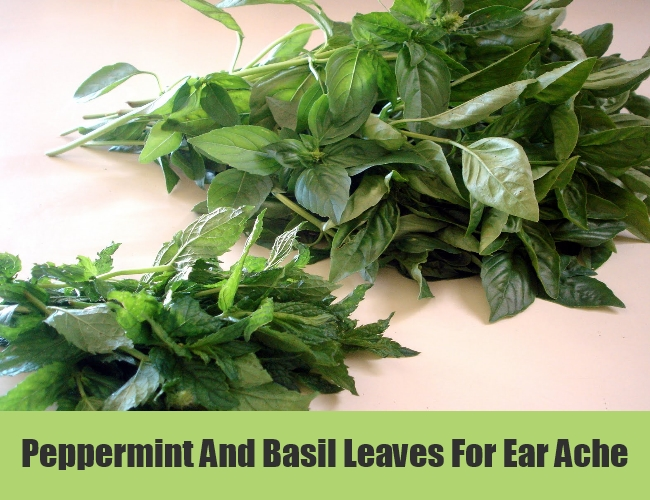 Peppermint And Basil Leaves For Ear Ache