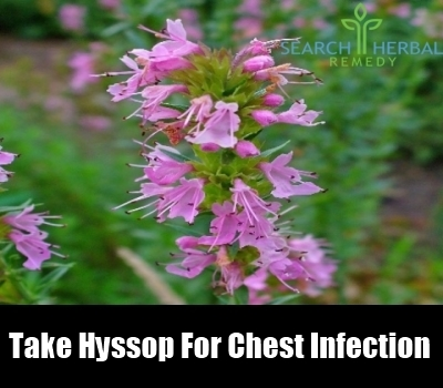 Natural Remedy For Tight Wheezy Chest