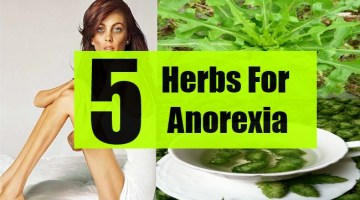 5 Herbs For Anorexia