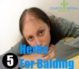 5 Herbs For Balding