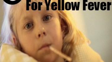 5 Remedies For Yellow Fever