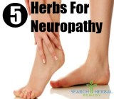 5 Herbs For Neuropathy