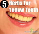 5 Herbs For Yellow Teeth