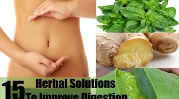 Herbal Solutions To Improve Digestion