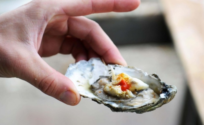 Eat Oyster