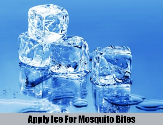 Apply Ice For Mosquito Bites