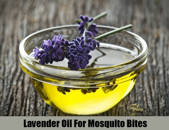 Lavender Oil For Mosquito Bites