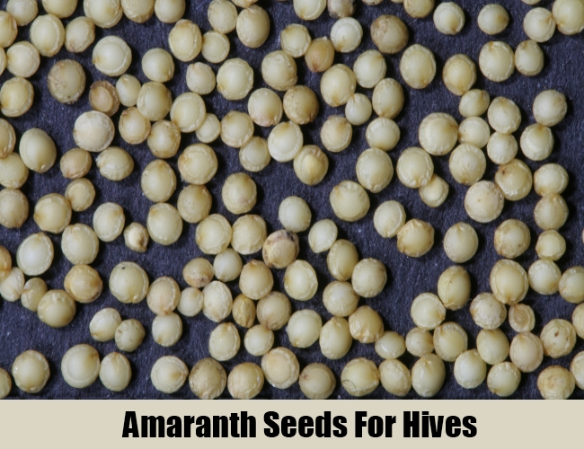 Amaranth Seeds For Hives