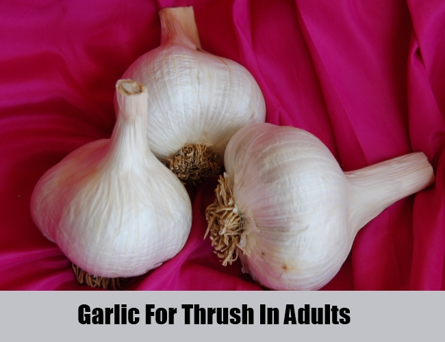 Garlic For Thrush In Adults