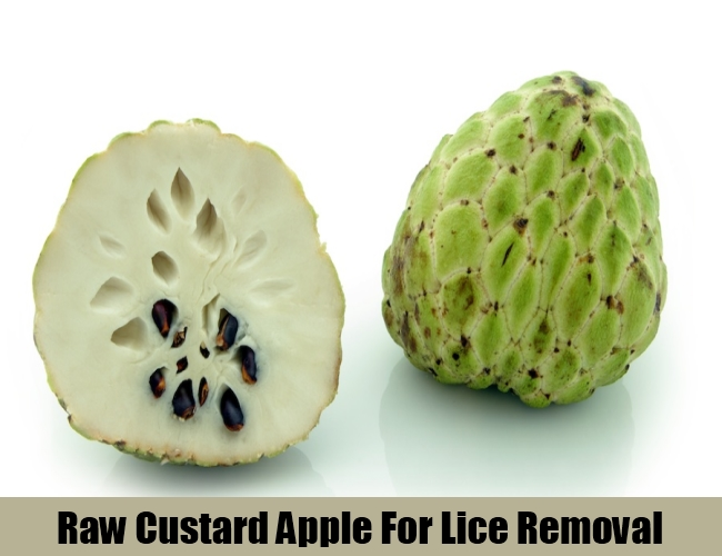 Raw Custard Apple For Lice Removal